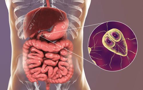 A prostatitis kezelése az emberekben