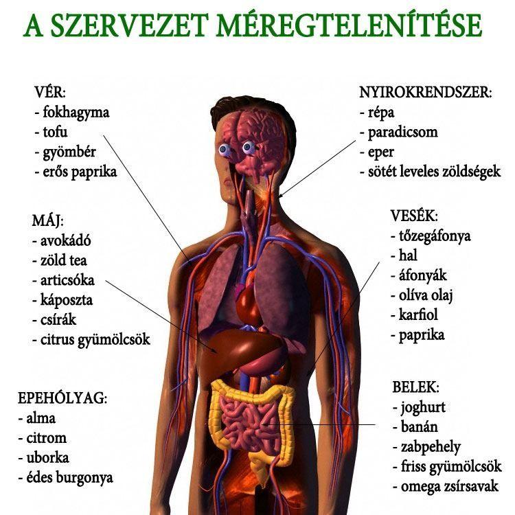 gyógyszer a káposzta parazitáira)