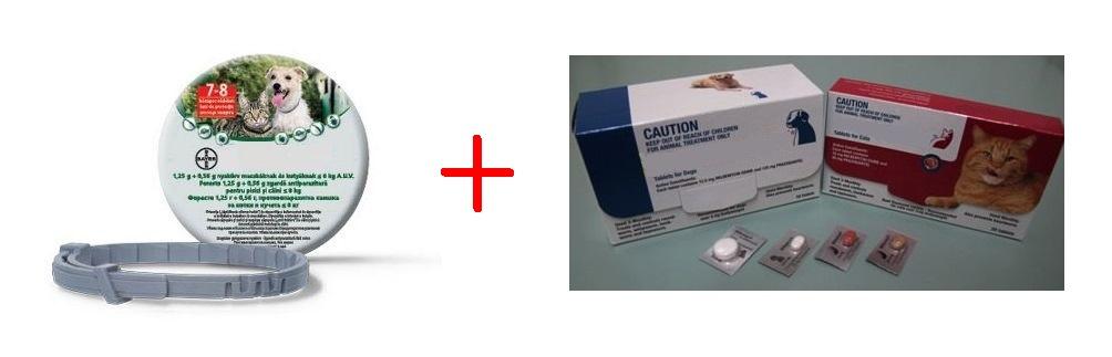 szívféreg gyógyszer hogyan lehet gyorsan felépülni a féregférgektől