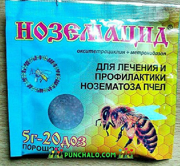 paraziták repülési betegség kezelése