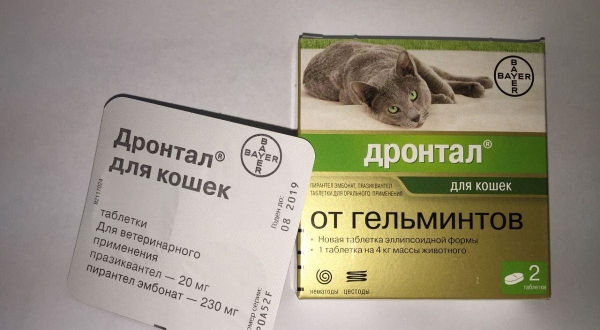 féreggyógyszer 1