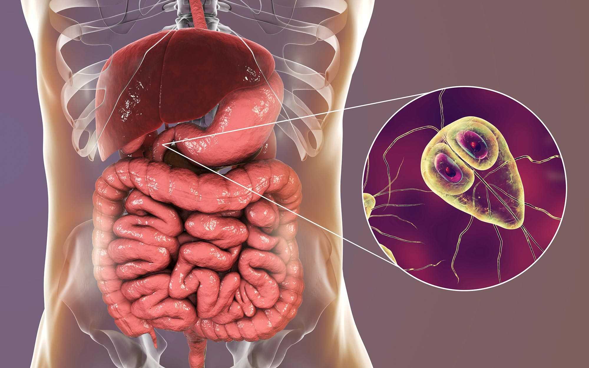 giardiasis behandlung mensch féregtabletta tizenévesek számára