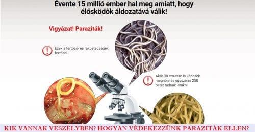 férgek gyógyszerek összehasonlítani paraziták e. g. giardia