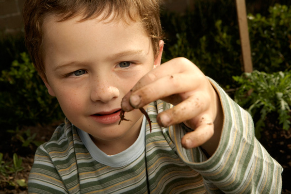 a férgek allergiákat okoznak a parazitáktól való tisztítás tapasztalata