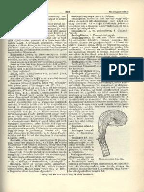 parazitizmus bika szalagféreg