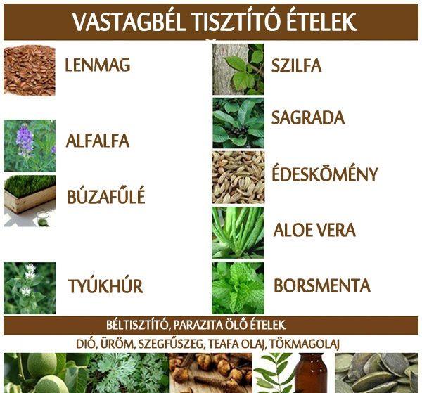 szaprofitok és élősködők helminthiasis fertőzés