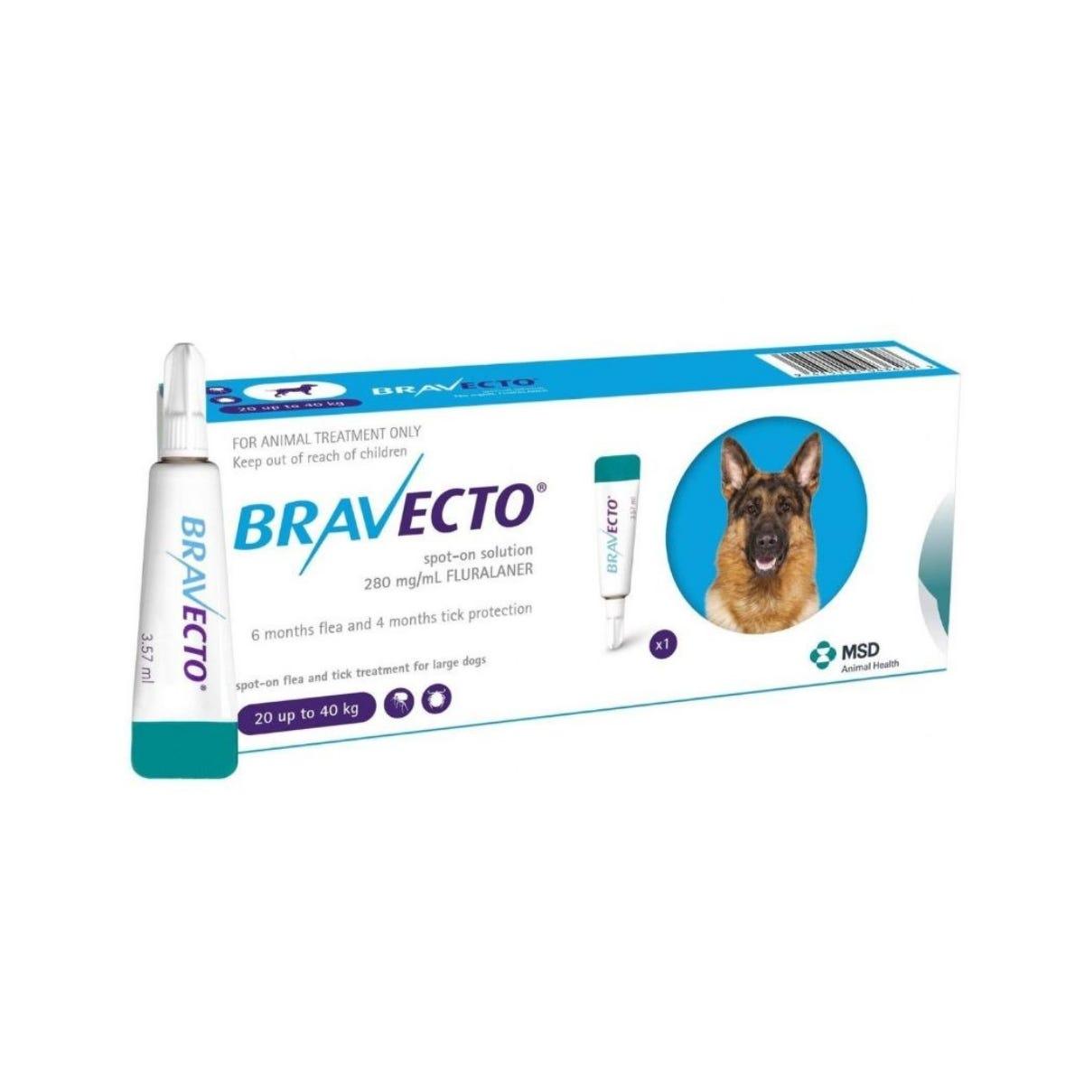 bravecto szivfereg ellen bika szalagféreg megelőzése