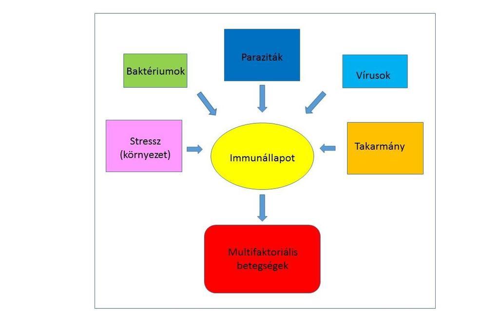 fekete tőkehal paraziták paraziták általi immunkerülés mechanizmusok