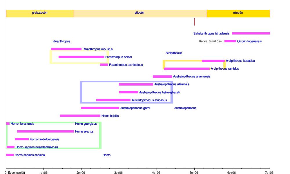 röviden a fascioliasis fejlődési ciklusa pinworm fejlesztési ciklus