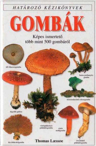 gombák paraziták formájában