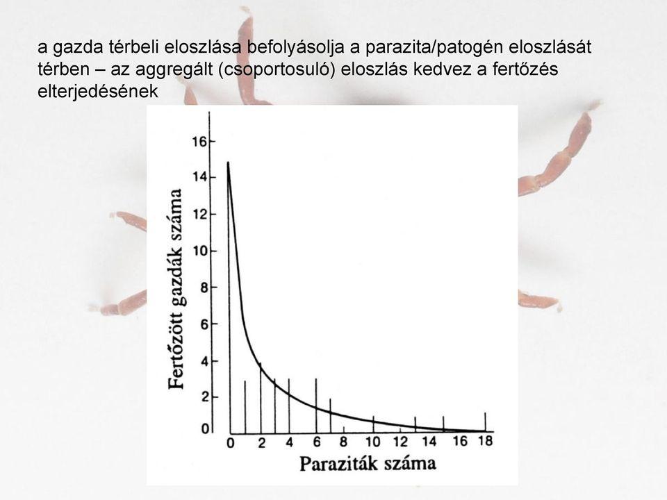 perzisztens paraziták tabletták a kerekférgek kezelésére