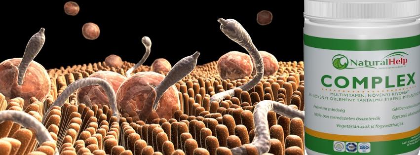 a paraziták testét tisztító készítmények széles szalag a betegség nevét