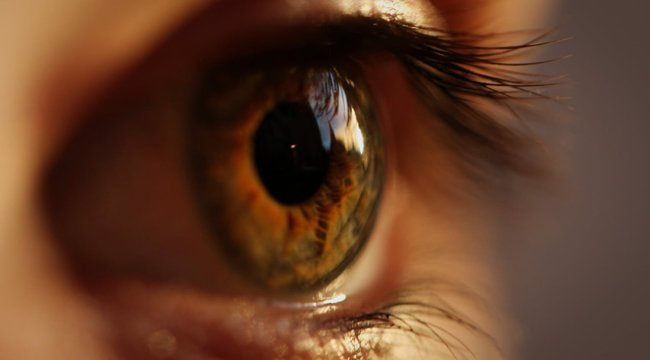emberi szem férgek kezelése otthon vastagbél méregtelenítő tisztító