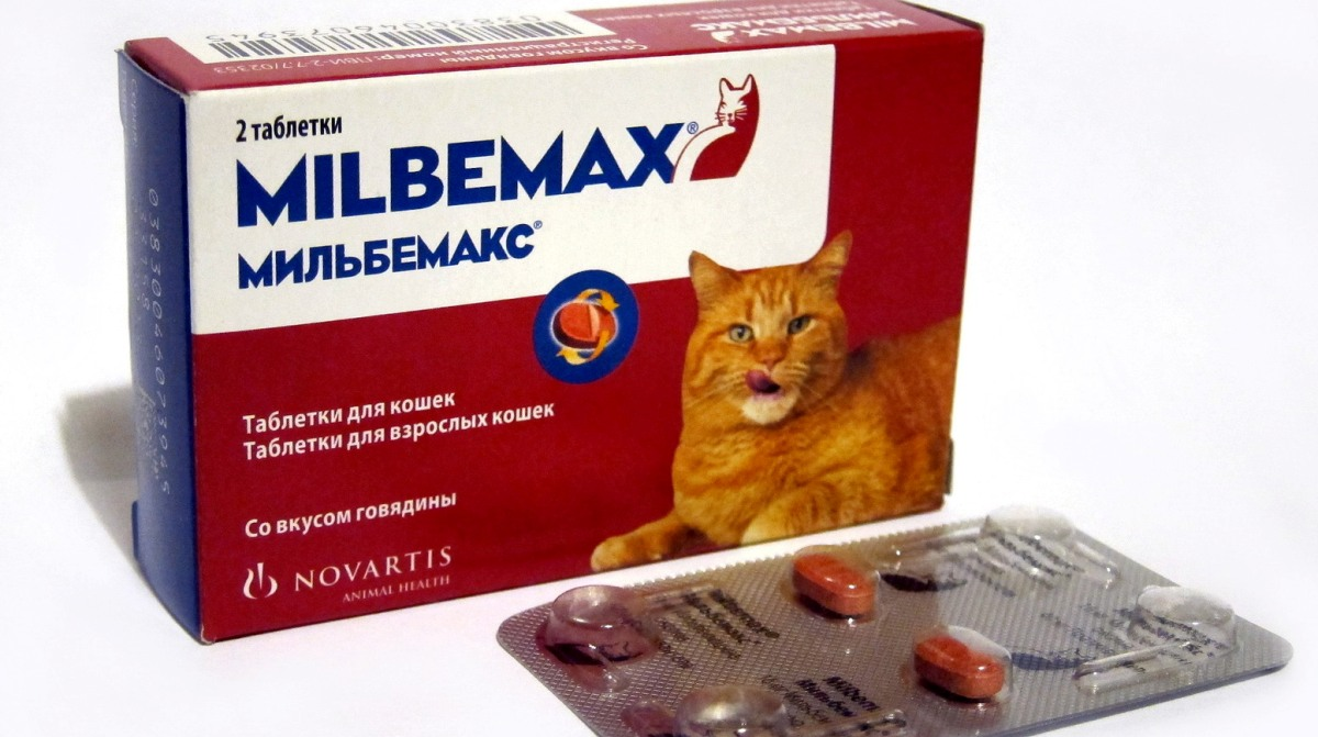 helmint megelőző tabletták