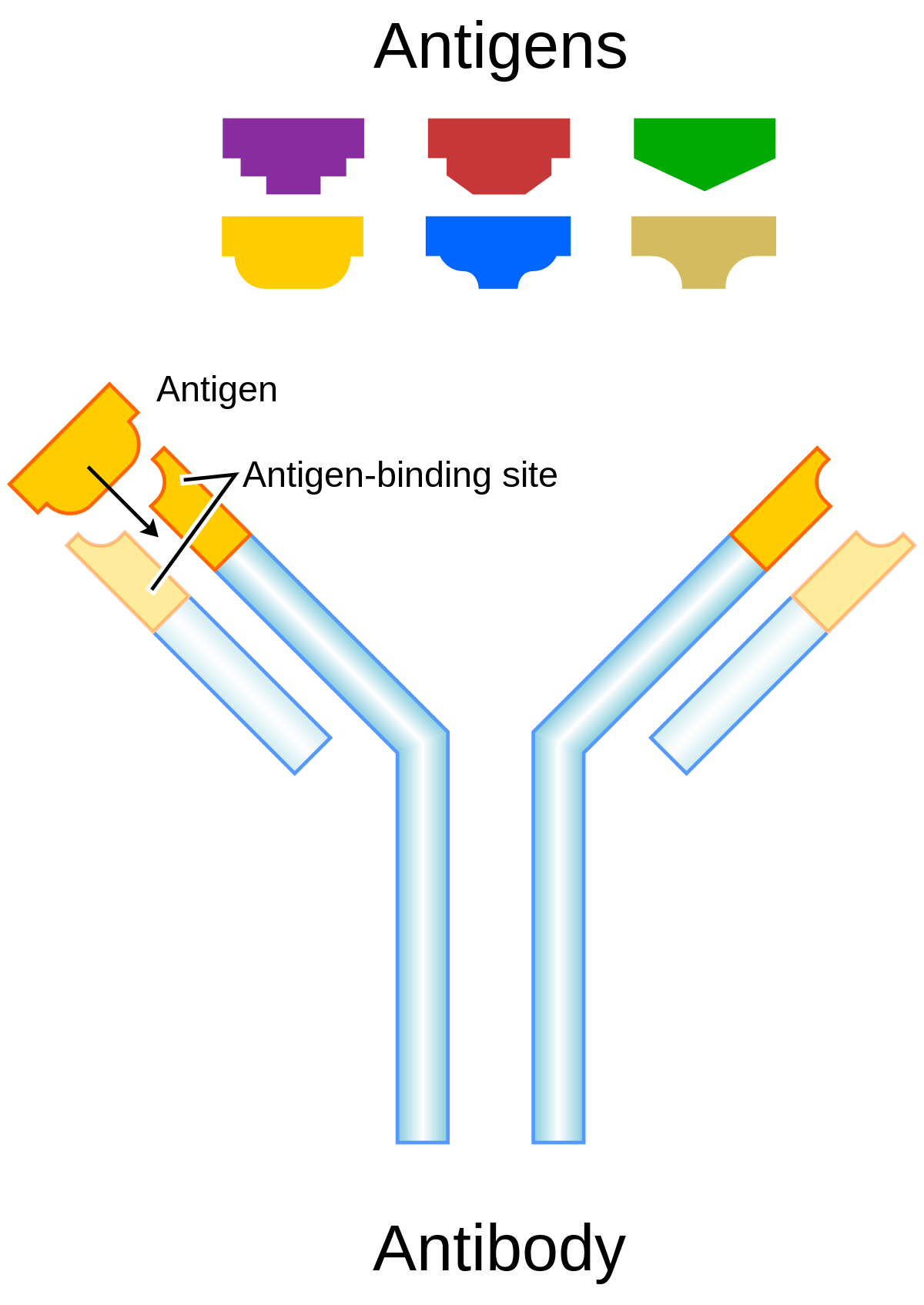 a keresztezett férgek elleni összes antitest féreghajto veny nelkul