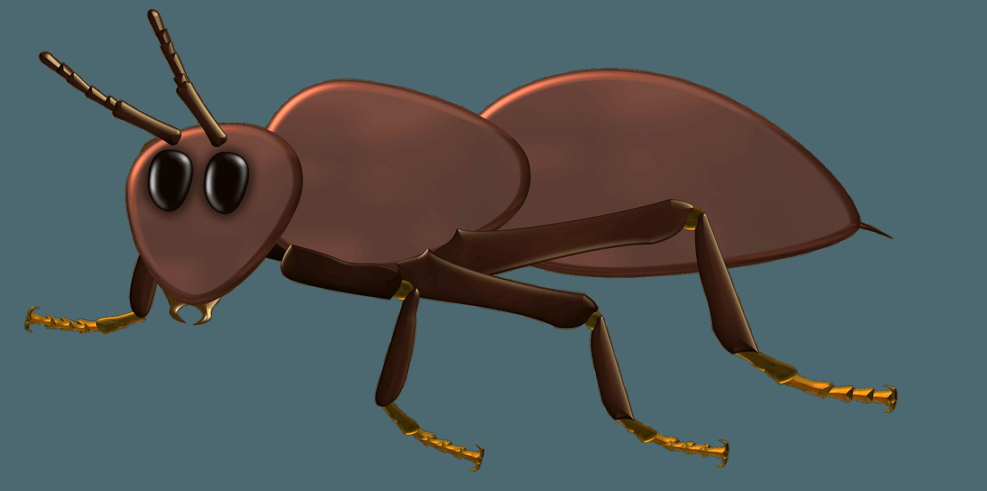 férgek széles spektrumú készítményei hasnyálmirigy paraziták kezelése